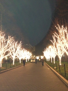 Trees light up College Walk at Columbia University