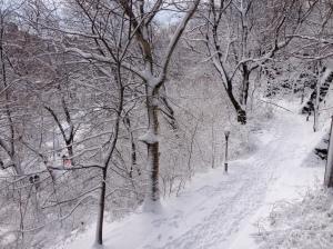 Snowfall in Riverside Park