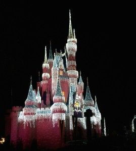 Cinderella Castle lights up the sky