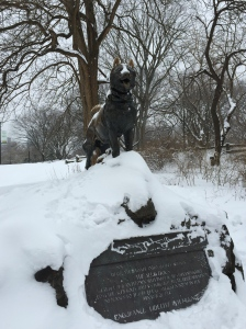 Balto proudly watching over all the winter explorers who pass by