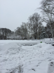 If the park is like this in early March, the only option is to ignore the weather